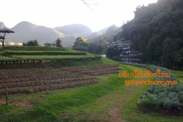 trip-maesai-taton-aangkang-34