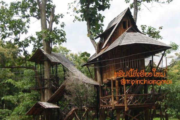 บ้านพักทาร์ซาน(บ้านต้นไม้) สวนป่าแม่แจ่ม