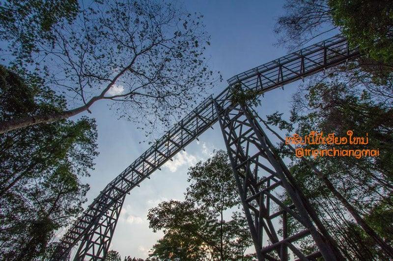 canopy-walkway-06