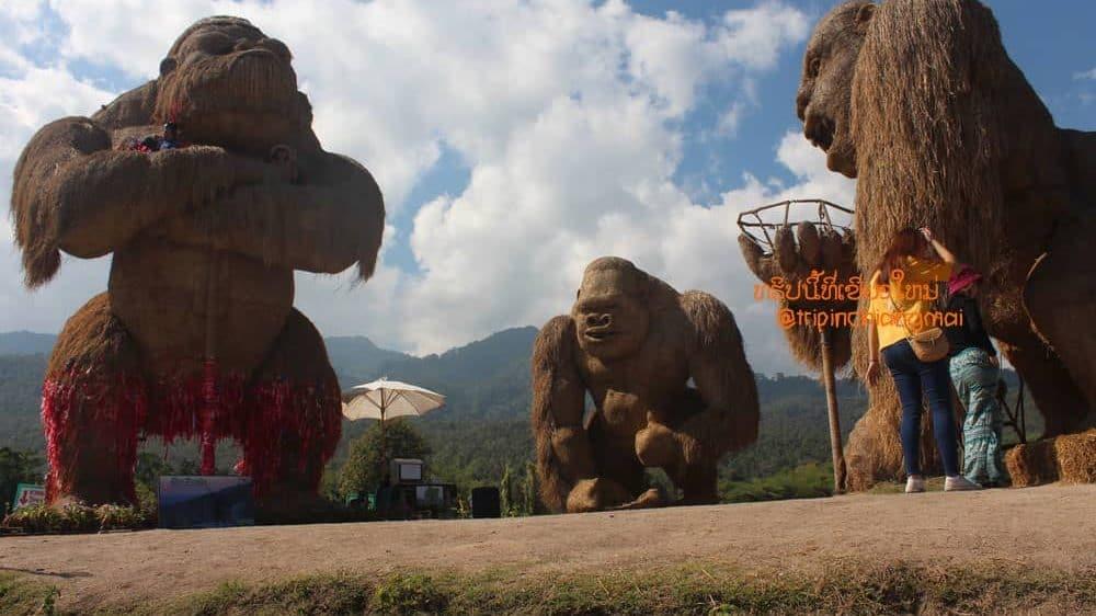 ห้วยตึงเฒ่า หุ่นฟางคิงคองยักษ์