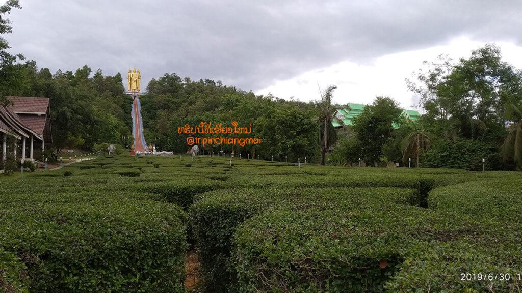 นมัสการพระพุทธรูป 4ทิศ วัดดอยสัพพัญญู