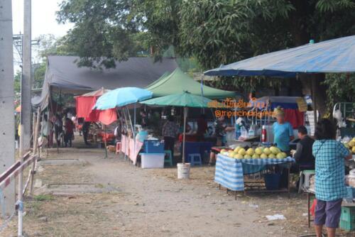 market-cow-sanpatong-06