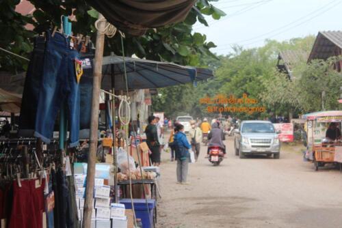 market-cow-sanpatong-12
