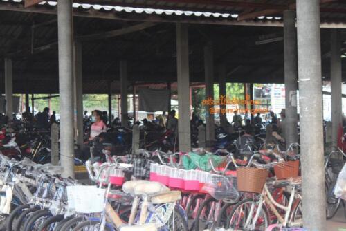 market-cow-sanpatong-13