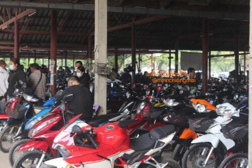 market-cow-sanpatong-17