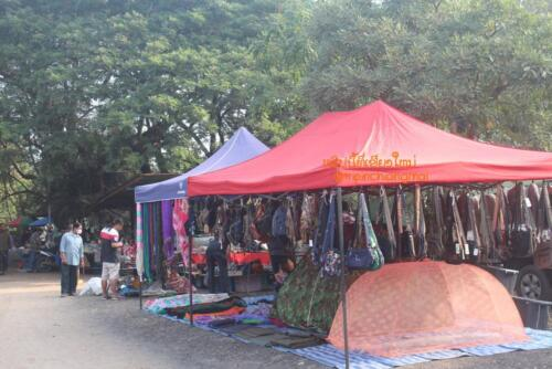 market-cow-sanpatong-33