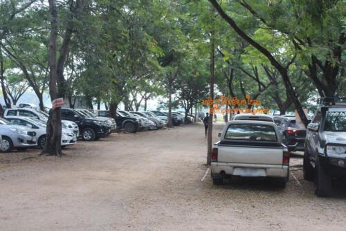 market-cow-sanpatong-68